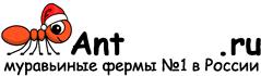 Муравьиные фермы AntFarms.ru - Ставрополь